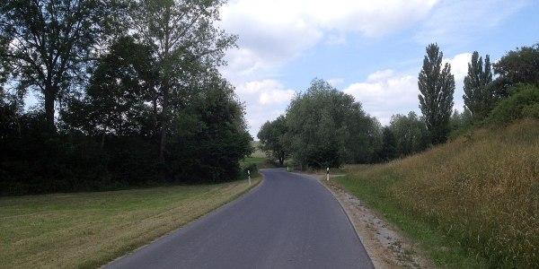 … weshalb ich nicht Richtung Uffenheim/B13 fahre (schnurgerade, kaum Bäume und Sträucher, voll im Gegenwind), sondern die ST2252 bei Ergersheim verlasse und die kleinen Straßen wähle, hier: NEA31 vor Seenheim.