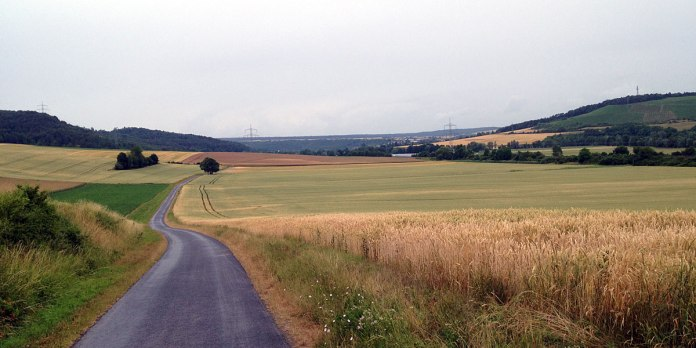 … wenn nicht gleich auf Landwirtschaftsrouten verwiesen wird: Der letzte Werntal-Abschnitt für mich am Samstag, kurz vor Gössenheim.
