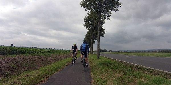 17:36 | Irgendwo auf der Höhe von Göttingen, das ich links umfahre: Ein Radler kommt mir entgegen, ich fahre rechts – da überholt mich noch schnell ein älterer Herr mit seinem Rennrad …